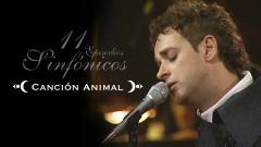 Cancíon Animal (11 Episodios Sinfónicos) - Gustavo Cerati