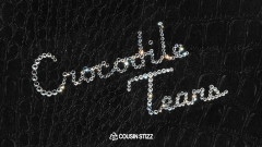 Crocodile Tears (Audio) - Cousin Stizz