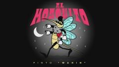 El Mosquito (Audio) - Pinto