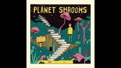 Planet Shrooms (Audio) - Woodie Smalls