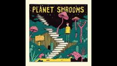 Planet Shrooms (Audio) - Woodie Smalls