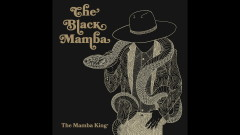 Grey Eyes (Audio) - The Black Mamba