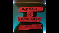 Checklist (with Calvin Harris) (Audio) - Normani, Calvin Harris, Wizkid