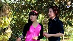 Hương Sầu Riêng Muộn - Hoàng Mai Trang, Ngô Quốc Linh