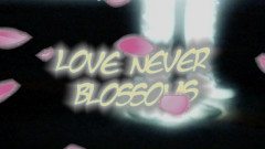 Love Never Blossoms