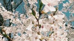 Spring Again (Karaoke Ver)