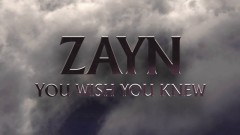 You Wish You Knew (Audio) - ZAYN