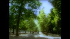 Hitomini Utsurumono - L'Arc-en-Ciel