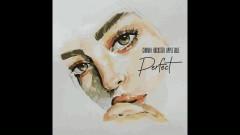 Perfect (Radio Edit) - Cinimin, Rocksted, Apple Gule