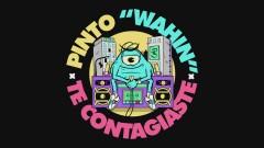Te Contagiaste (Audio) - Pinto