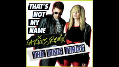 That's Not My Name (L.A. Riots Remix) (Audio) - The Ting Tings