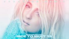 Nice to Meet Ya (Zookëper Remix - Audio) - Meghan Trainor, Nicki Minaj