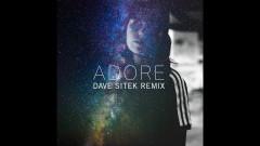 Adore (Dave Sitek Remix) (Audio) - Amy Shark