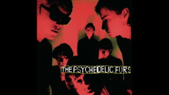 India (Audio) - The Psychedelic Furs