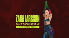 Don't Worry Bout Me (Rudimental Remix - Audio) - Zara Larsson