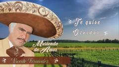 Quisiera Saber (Te Quise Olvidar) (Cover Audio) - Vicente Fernández