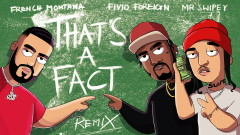 That's A Fact (Remix - Audio) - French Montana, Fivio Foreign, Mr. Swipey