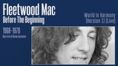 World in Harmony (Live) [Remastered] [Official Audio] - Fleetwood Mac