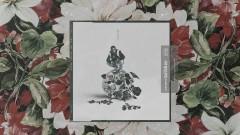 Nina (Audio) - Calboy