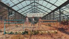 Cabbage Bosom - Pungdeng-E