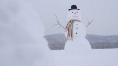 Lil Snowman - Mariah Carey