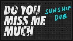 Do You Miss Me Much (Sunship Dub Mix) [Audio]