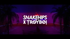 Wavez (Audio) - Snakehips, TroyBoi