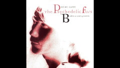 Goodbye (Dance Mix) [Audio] - The Psychedelic Furs