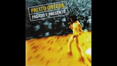 Bienvenido Amor (Official Audio) - Palito Ortega