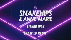 Either Way (The Wild Remix [Audio]) - Snakehips, Anne-Marie, Joey BADA$$