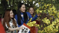 Xin Đừng Hái Hoa - Nhật Kim Anh
