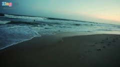 Biển Tình - La Thoại Phi