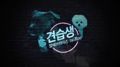Gyeonseubsaeng (견습생) - Yang Brothers, Jeon JiYoon