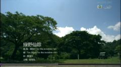綠野仙踪 / Trail Of The Angels - Dung Tổ Nhi