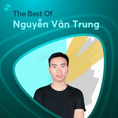 Những Bài Hát Hay Nhất Của Nguyễn Văn Trung - Nguyễn Văn Trung