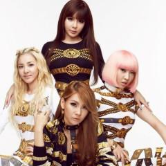 Nghệ sĩ 2NE1