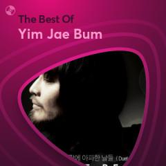 Những Bài Hát Hay Nhất Của Yim Jae Bum