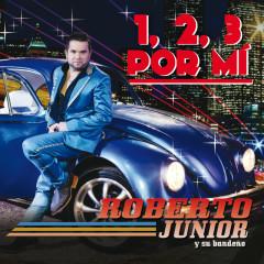 Roberto Junior Y Su Bandenõ
