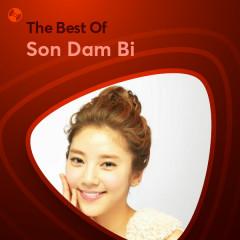 Những Bài Hát Hay Nhất Của Son Dam Bi - Son Dam Bi