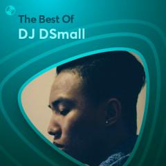 Những Bài Hát Hay Nhất Của DJ DSmall