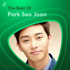 Những Bài Hát Hay Nhất Của Park Seo Joon