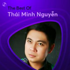 Những Bài Hát Hay Nhất Của Thái Minh Nguyễn - Thái Minh Nguyễn