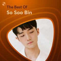 Những Bài Hát Hay Nhất Của So Soo Bin - So Soo Bin