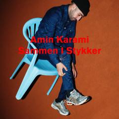 Amin Karami
