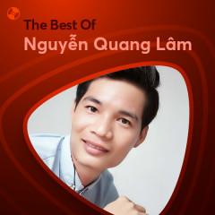 Những Bài Hát Hay Nhất Của Nguyễn Quang Lâm - Nguyễn Quang Lâm