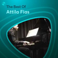 Những Bài Hát Hay Nhất Của Attila Fias