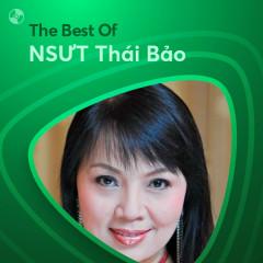Những Bài Hát Hay Nhất Của NSƯT Thái Bảo - NSƯT Thái Bảo