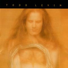 Todd Levin Music