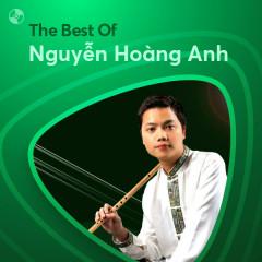 Những Bài Hát Hay Nhất Của Nguyễn Hoàng Anh - Nguyễn Hoàng Anh