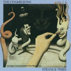 The Chameleons UK